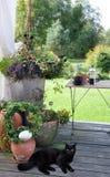 Gardenlife咖啡休息 免版税图库摄影