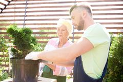 Gardenmers fonctionnant dans la plantation photographie stock