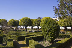 Gardens of the alcazar in Cordoba Royalty Free Stock Photo