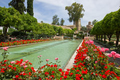 Gardens at the Alcazar, Cordoba, Spain. Gardens at the Alcazar de los Reyes Cristianos in Cordoba, Spain Royalty Free Stock Image