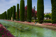 Gardens at the Alcazar in Cordoba, Spain. Arab gardens with fountains at the Alcazar de los Reyes Cristianos oin Cordoba, Spain Stock Photography