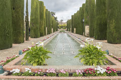 Gardens of Alcazar de los Reyes Cristianos in Cordoba, Spain.  Royalty Free Stock Photo
