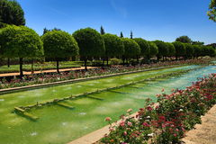 Gardens of Alcazar de los Reyes Cristianos, Cordoba, Spain. The place is declared UNESCO World Heritage Site. CORDOBA, SPAIN Stock Photos