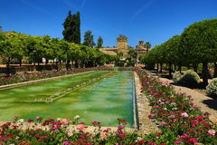 Gardens of Alcazar de los Reyes Cristianos, Cordoba, Spain. The place is declared UNESCO World Heritage Site. CORDOBA, SPAIN Stock Image