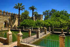 Gardens of Alcazar de los Reyes Cristianos, Cordoba, Spain. The place is declared UNESCO World Heritage Site. CORDOBA, SPAIN. A Picture of the Gardens of Alcazar Stock Images