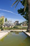Gardens of Alhambra Palace in Granada Royalty Free Stock Photography