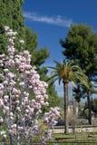 Gardens of Alhambra Palace in Granada Stock Photo
