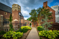 Gardens along walkway and buildings at Yale University, in New H Royalty Free Stock Photography