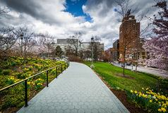 Gardens along a walkway at the Pennsylvania State Capitol Comple Stock Images