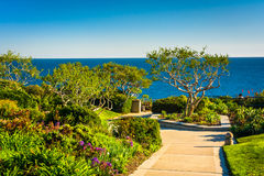 Gardens And Trees Overlooking The Pacific Ocean Royalty Free Stock Photo