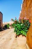 Gardens in the Basilica of Arkadi Monastery on Crete. Island, Greece Stock Images