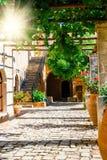 Gardens in the Basilica of Arkadi Monastery on Crete, Greece. Gardens in the Basilica of Arkadi Monastery on Crete Island, Greece Royalty Free Stock Photo