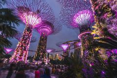 Gardens by the Bay are the absolutely highlight of visiting Singapore, especially in the night when is alway a light show on stock photography