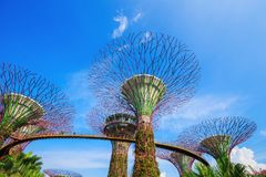 Gardens by the bay at Singapore Royalty Free Stock Photography