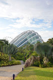 Gardens by the Bay Cloud Forest Dome Stock Images