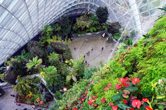 Gardens by the Bay Cloud forest pavillion Royalty Free Stock Photos