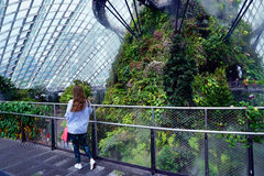 Gardens by the Bay Cloud forest pavillion Stock Photos