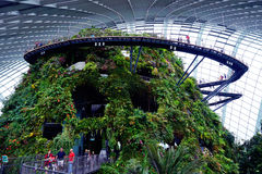 Gardens by the Bay Cloud forest pavillion Stock Images