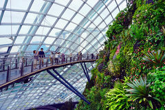 Gardens by the Bay Cloud forest pavillion Royalty Free Stock Image