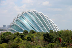 Gardens By the Bay Conservatory - Singapore Stock Photos