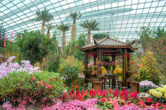 Gardens by the Bay, Flower Dome: Chinese New Year Royalty Free Stock Image