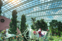 Gardens by the Bay, Flower Dome: Christmas Stock Image
