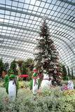 Gardens by the Bay, Flower Dome: Winter Stock Photo