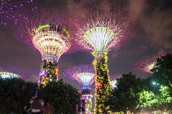 Gardens by the attraction. Gardens by the bay free attraction singapore Stock Photos
