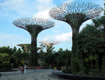 Gardens by the Bay. Royalty Free Stock Images