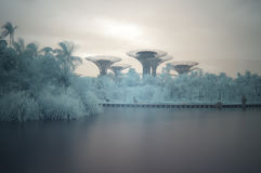 Gardens by the Bay, infrared, long exposure stock images