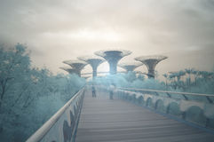 Gardens by the Bay, infrared, long exposure Royalty Free Stock Photo