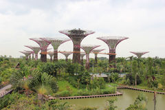 Gardens by the Bay, an integral part of a strategy by the Singap. Ore government to transform Singapore from a Garden City to a City in a Garden Royalty Free Stock Photos