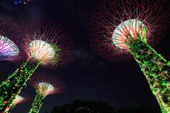 Gardens by the bay at night, Singapore Stock Photos