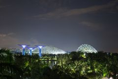 Gardens by the bay at night, Singapore Royalty Free Stock Photos
