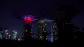 Gardens by the Bay Light Show at Supertree Grove Singapore