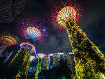 Gardens by the Bay and the Marina Bay Sands Hotel. The Super Tree Grove at Gardens by the Bay with the Marina Bay Sands hotel in the background Stock Image