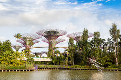Gardens by the Bay Nature Park in Singapore Stock Photo
