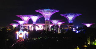 Gardens by the bay. Is a nature park spanning 101 hectares (250 acres) of reclaimed land[2] in central Singapore, adjacent to the Marina Reservoir. The park Royalty Free Stock Photos
