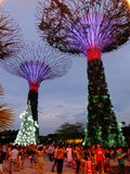 Gardens by the bay. Is a nature park spanning 101 hectares (250 acres) of reclaimed land[2] in central Singapore, adjacent to the Marina Reservoir. The park Royalty Free Stock Images