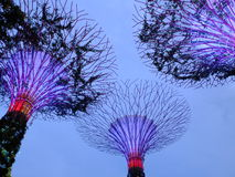 Gardens by the bay. Is a nature park spanning 101 hectares (250 acres) of reclaimed land[2] in central Singapore, adjacent to the Marina Reservoir. The park Stock Photos