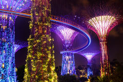 Gardens by the Bay. The new Gardens by the Bay in Singapore create an outer space landscape at night stock photos