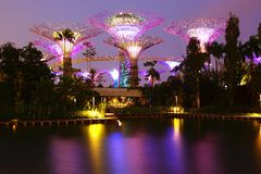 Gardens by the Bay at night. Singapore Royalty Free Stock Images