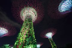 Gardens by the bay at night, Singapore Stock Image