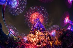 Gardens by the Bay at Night royalty free stock images