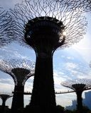Gardens by the Bay. Park entertainment attraction backlit Royalty Free Stock Photo