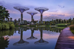 Gardens by the Bay. Pond in Gardens by the Bay, Singapore Stock Photo