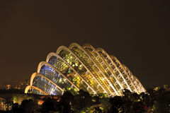 Gardens by the Bay Singapore. Singapore Garden by the Bay at night Stock Photo