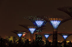 Super trees Gardens by the Bay Singapore. Singapore Garden by the Bay at night Royalty Free Stock Images