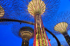 Super tree at Gardens by the Bay Singapore. Singapore Garden by the Bay at night Royalty Free Stock Photos