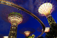 Super trees at ardens by the Bay. Singapore Garden by the Bay at night Royalty Free Stock Image